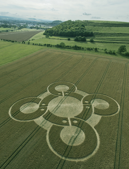 Share International November 2017 images, Crop pattern in wheat field in Battlesbury Camp, Wiltshire, England, 5 August 2017. photo: Steve Alexander, temporarytemples.co.uk.